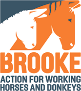 logo brooke