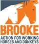 logo the brooke